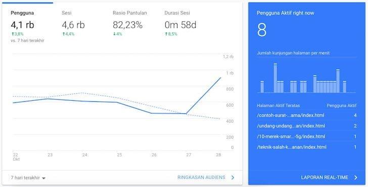 Tampilan Statistik Google Analytics Blogger Borneo