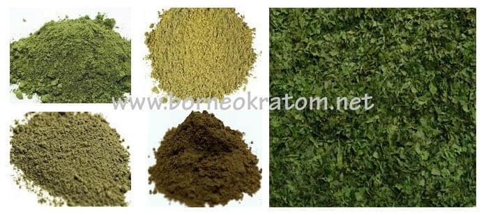 Borneo Kratom Supplier